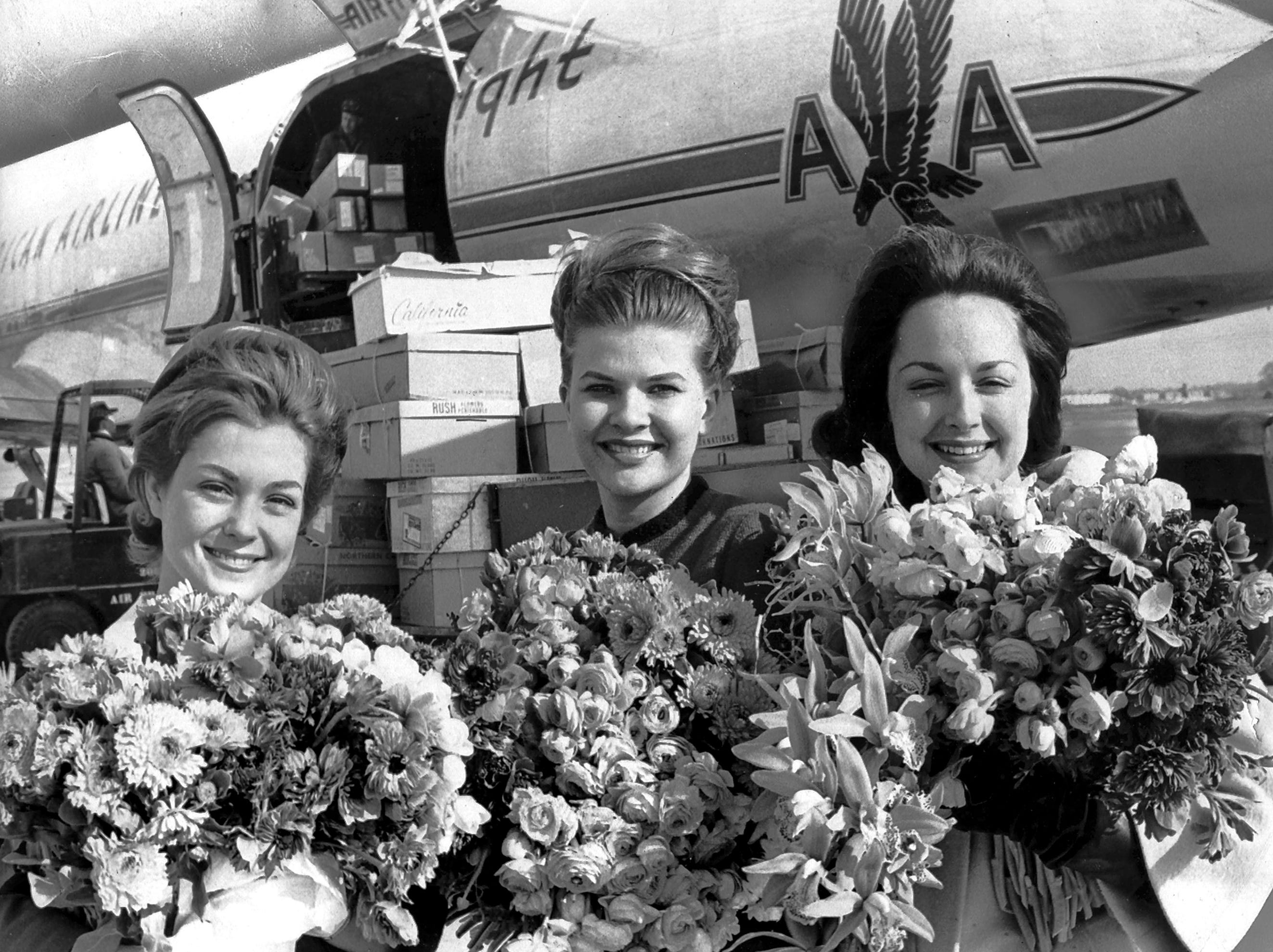 "January 18, 1964 - Fresh picked California flowers (almost a ton of them) shared the spotlight with three Memphis beauties on Jan. 18, 1964. They are (from left) Miss Jane Brackhahn; Miss Barbara Anderson, Miss Memphis; and Miss Patsy Jones, a former Miss Memphis. The flowers were flown here from California to decorate Goldsmith's for their ""California on the Mississippi"" display this week."
