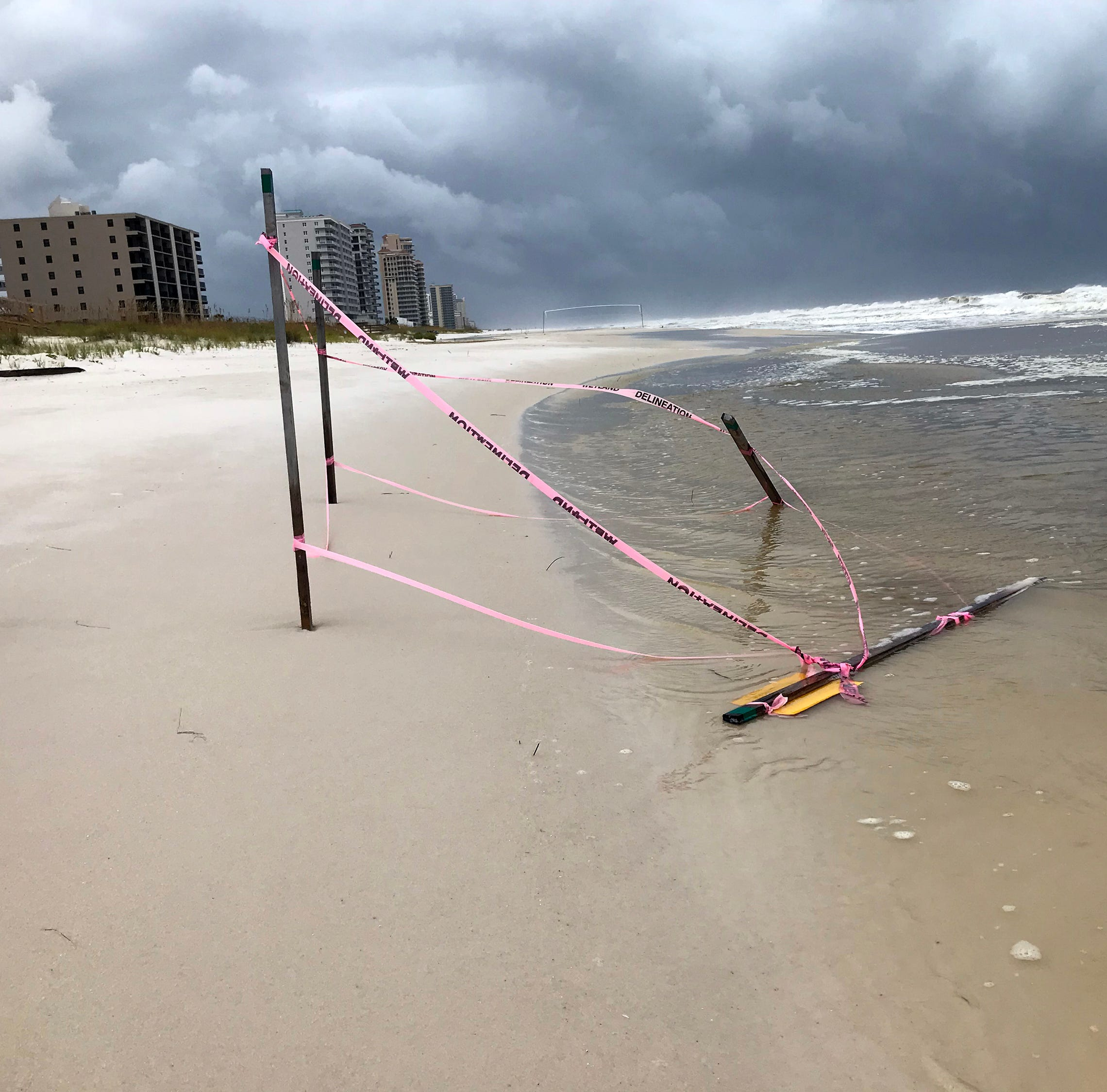 Gordon destroys sea turtle nests, covers roads in Gulf Islands National Seashore