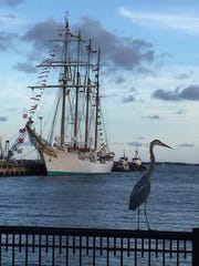 The Spanish Royal Navy tall ship Juan Sebastian de Elcano is pictured in downtown Pensacola in 2015. The ship will return to Pensacola this weekend.
