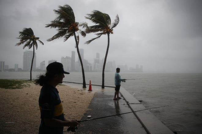 Walter Augier (L) and Jhon M. fish as rain and wind are whipped up by Tropical Storm Gordon on September 3, 2018 in Miami, Florida.