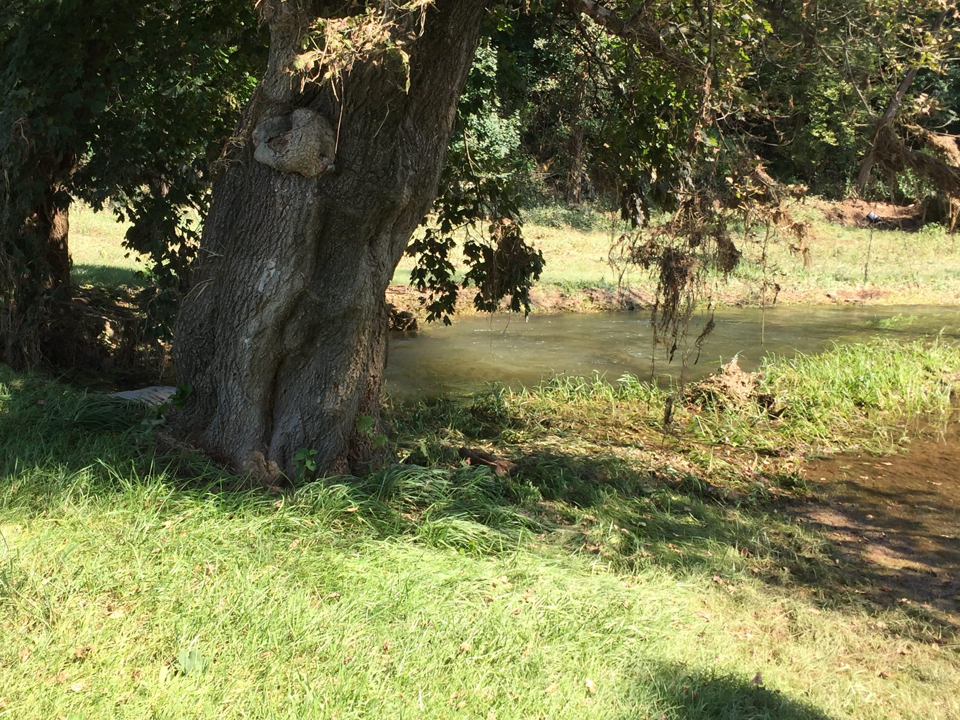 A look at the Tulpehocken Creek, still high four days after flooding a Richland home.
