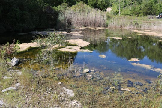 A new 15-acre public nature preserve on Kelleys Island is set to permanently protect and maintain a rare Great Lakes ecosystem that will be available for visitors to explore.