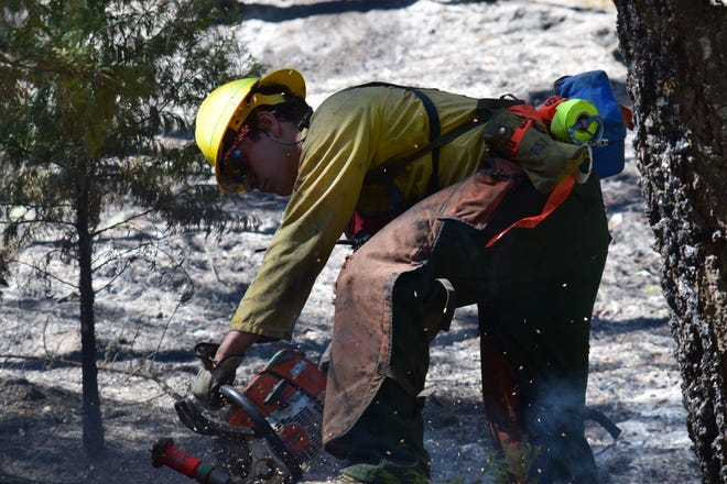 A firefighter clears snagged trees on the Hugo Road Fire.