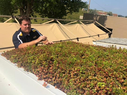 """South Dakota School of Mines and Technology researcher Jason Phillips stands atop a ladder and looks over a """"green roof"""" above a small building on a remote corner of campus. Water from the roof is captured by gutters and tested. Phillips has shown that roofs covered in vegetation can improve the quality and reduce the amount of stormwater runoff."""
