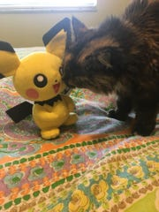 Nimueh gives her Pokemon toy a kiss.