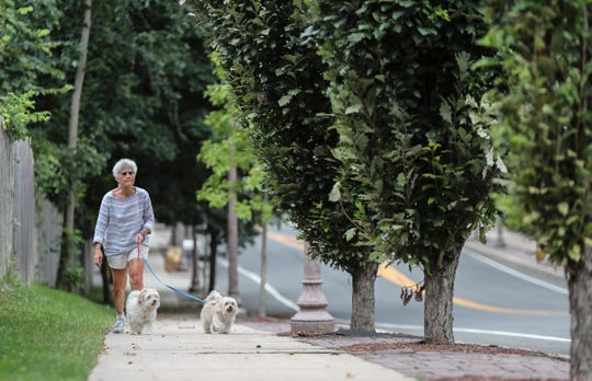 Jane Ripa and her dogs Dean, left, and Frankie, walk along New Lake St. in Valley Cottage on Saturday, September 1, 2018.