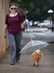 In this file photo, Brittany Teague takes her Pomeranian, Danny, for a walk in the rain Tuesday. He will only go out in the rain if he's under his umbrella-leash and wearing his boots. A survey by Innovet found people are treating their furry friends like a member of the family, sometimes prioritizing their pets needs over their own.