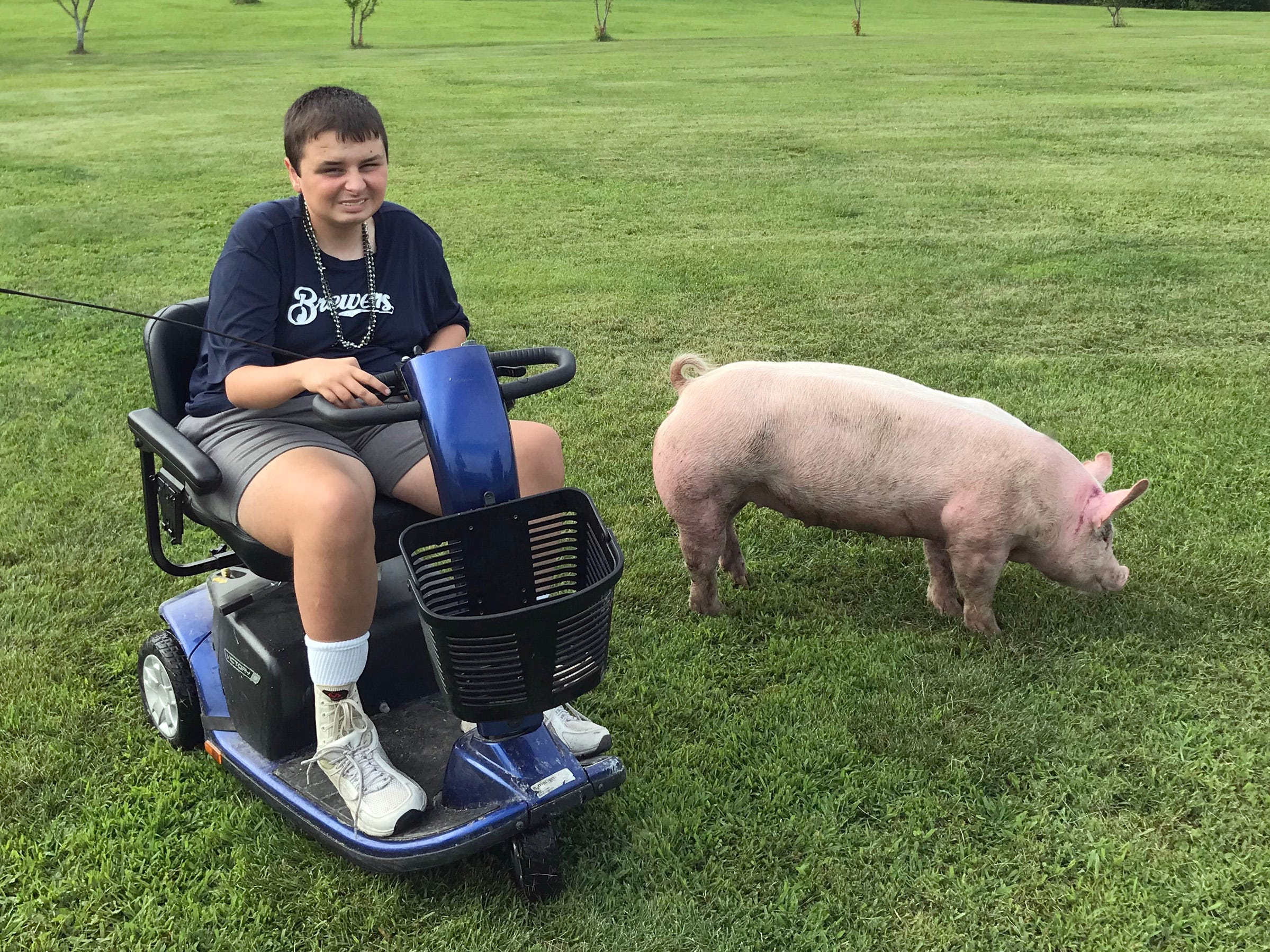 Cody Otto, 15, works with his pig, Wilbur, before the Manitowoc County Fair.
