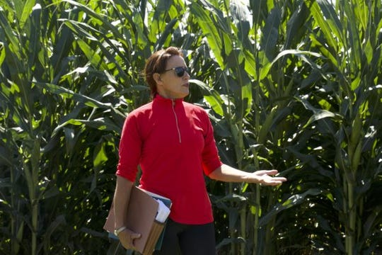 Heidi Kaeppler, UW–Madison associate professor of agronomy with the Wisconsin Crop Innovation Center, described new technology that can drastically reduce the time needed for genetic transformation of crops.