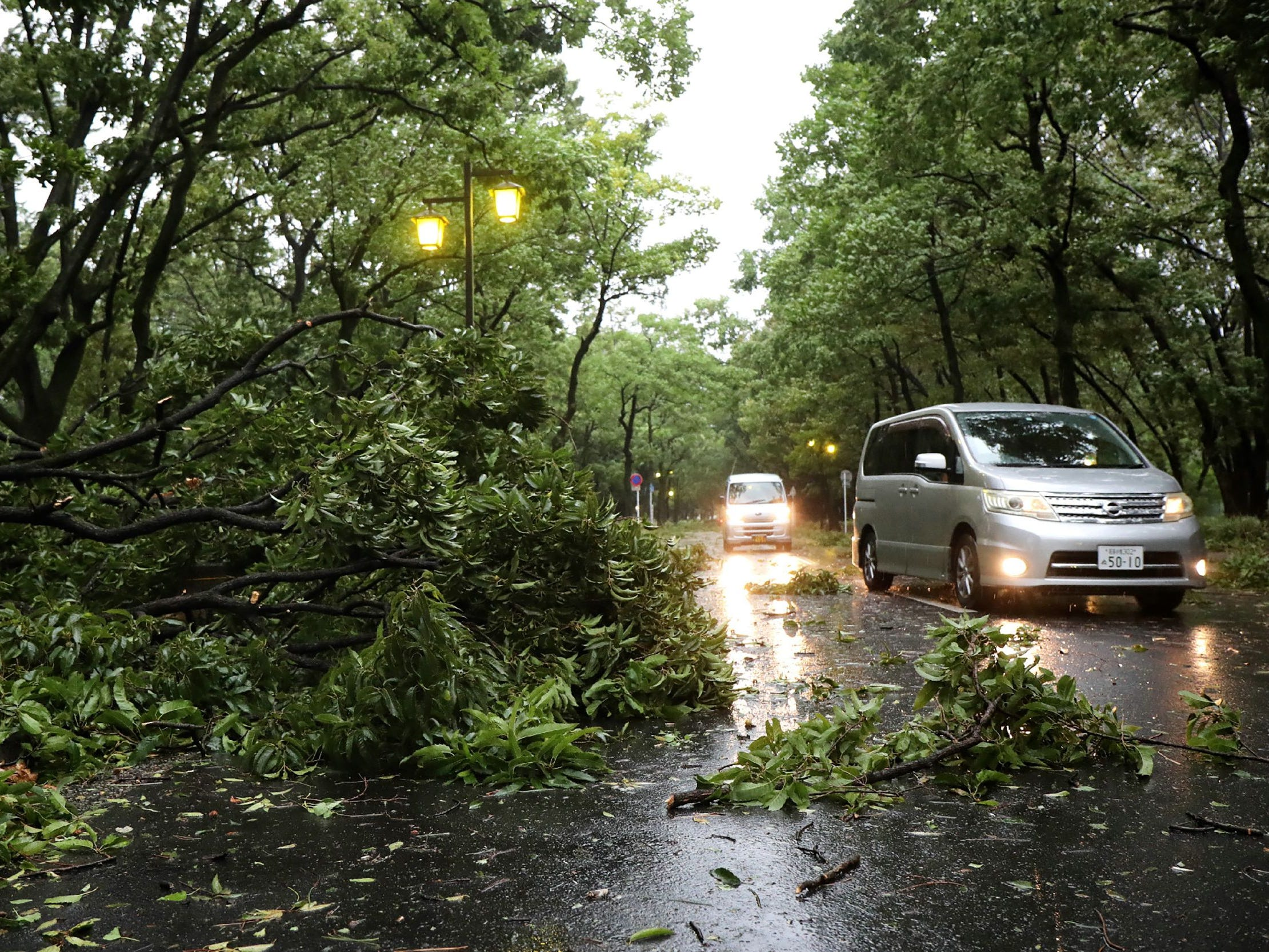 Vehicles drive past fallen trees due to weather patterns from Typhoon Jebi in Nagoya on September 4, 2018, as the typhoon made landfall around midday in southwestern Japan. - The strongest typhoon to hit Japan in 25 years made landfall on September 4, the country's weather agency said, bringing violent winds and heavy rainfall that prompted evacuation warnings. (Photo by JIJI PRESS / JIJI PRESS / AFP) / Japan OUTJIJI PRESS/AFP/Getty Images ORIG FILE ID: AFP_18U2NL