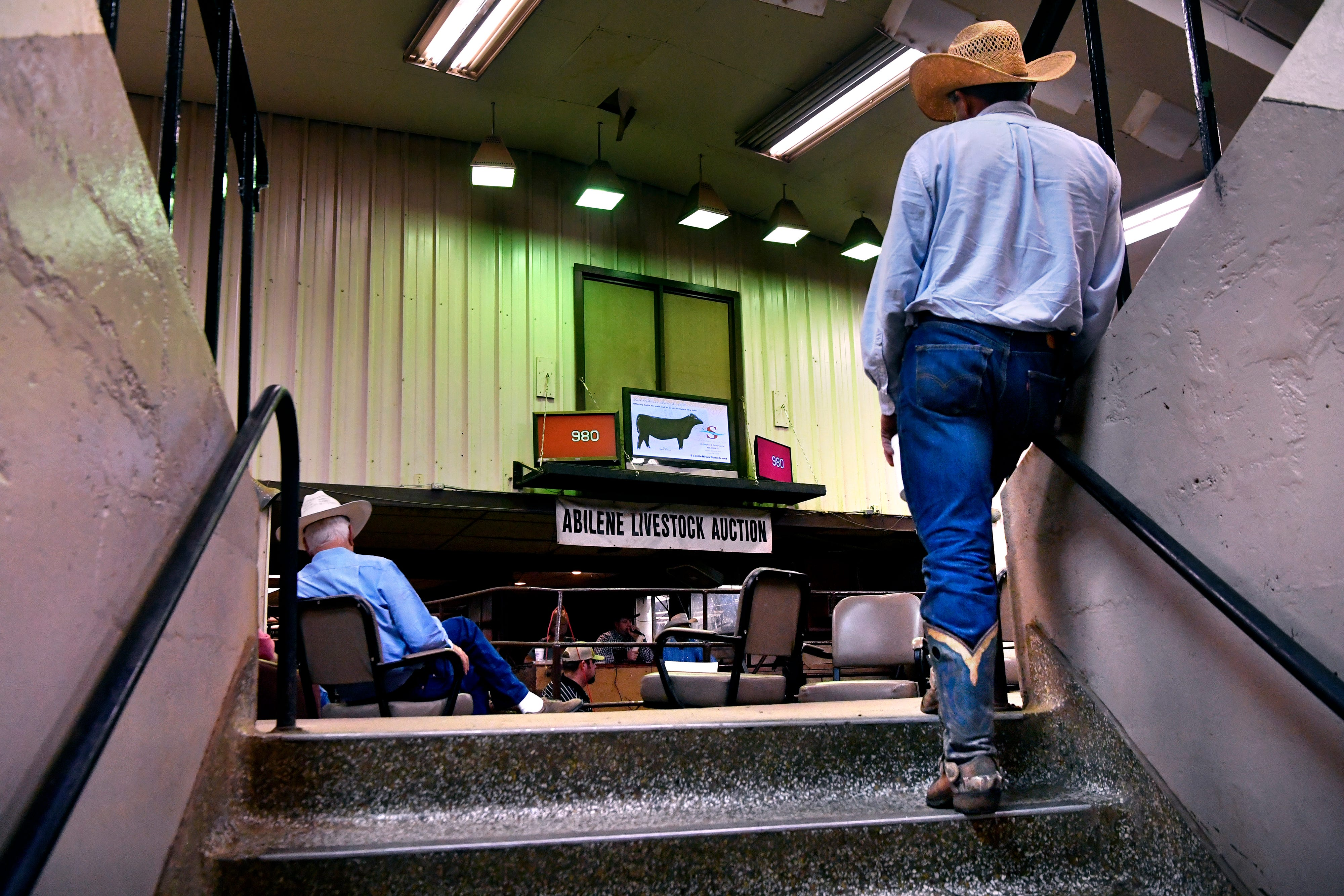 Buyers watch cattle and other livestock move through the sale ring at Abilene Livestock Auction.