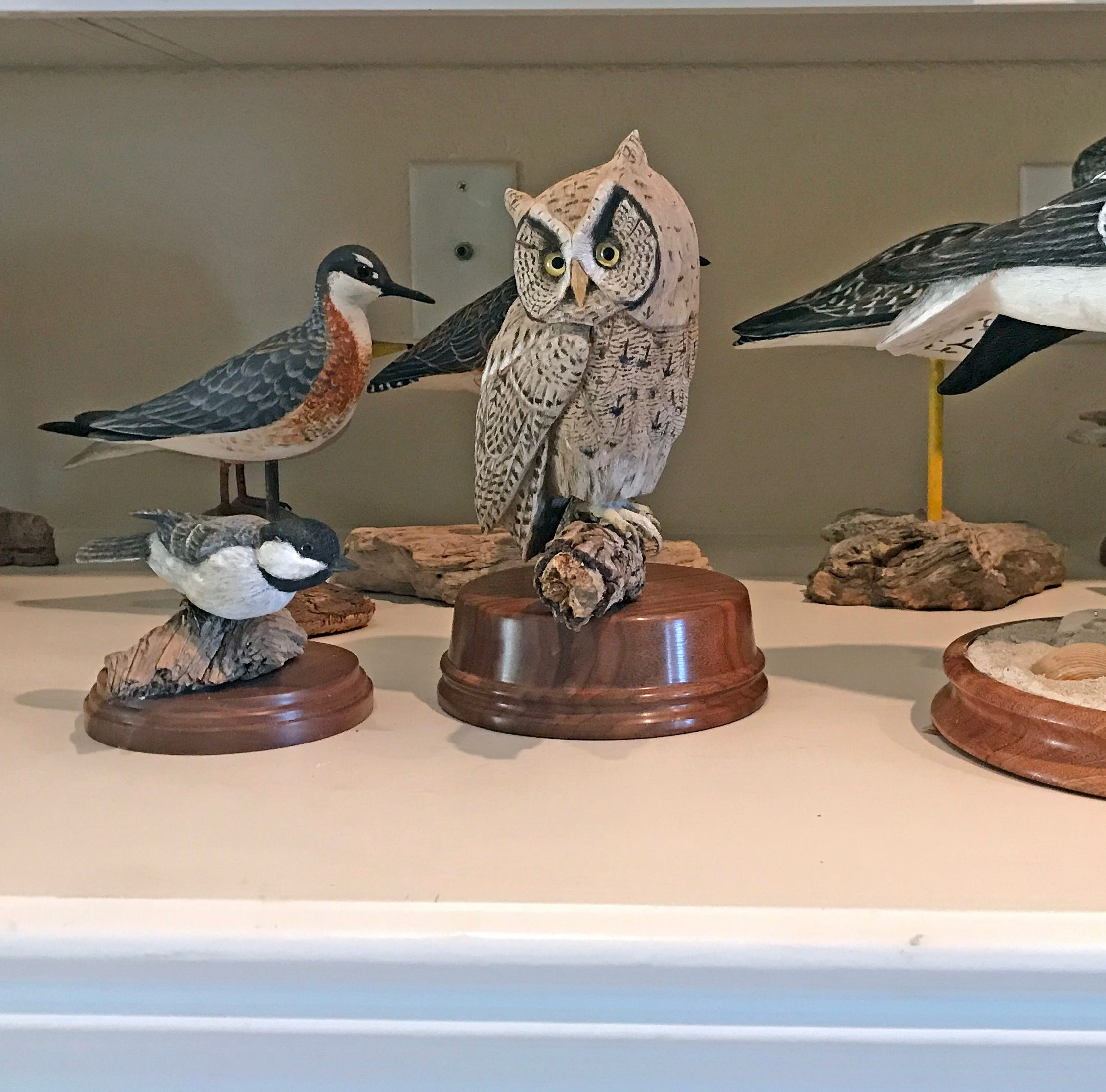 Corpus Christi wood carver brings birds to life with chisels, color, and care