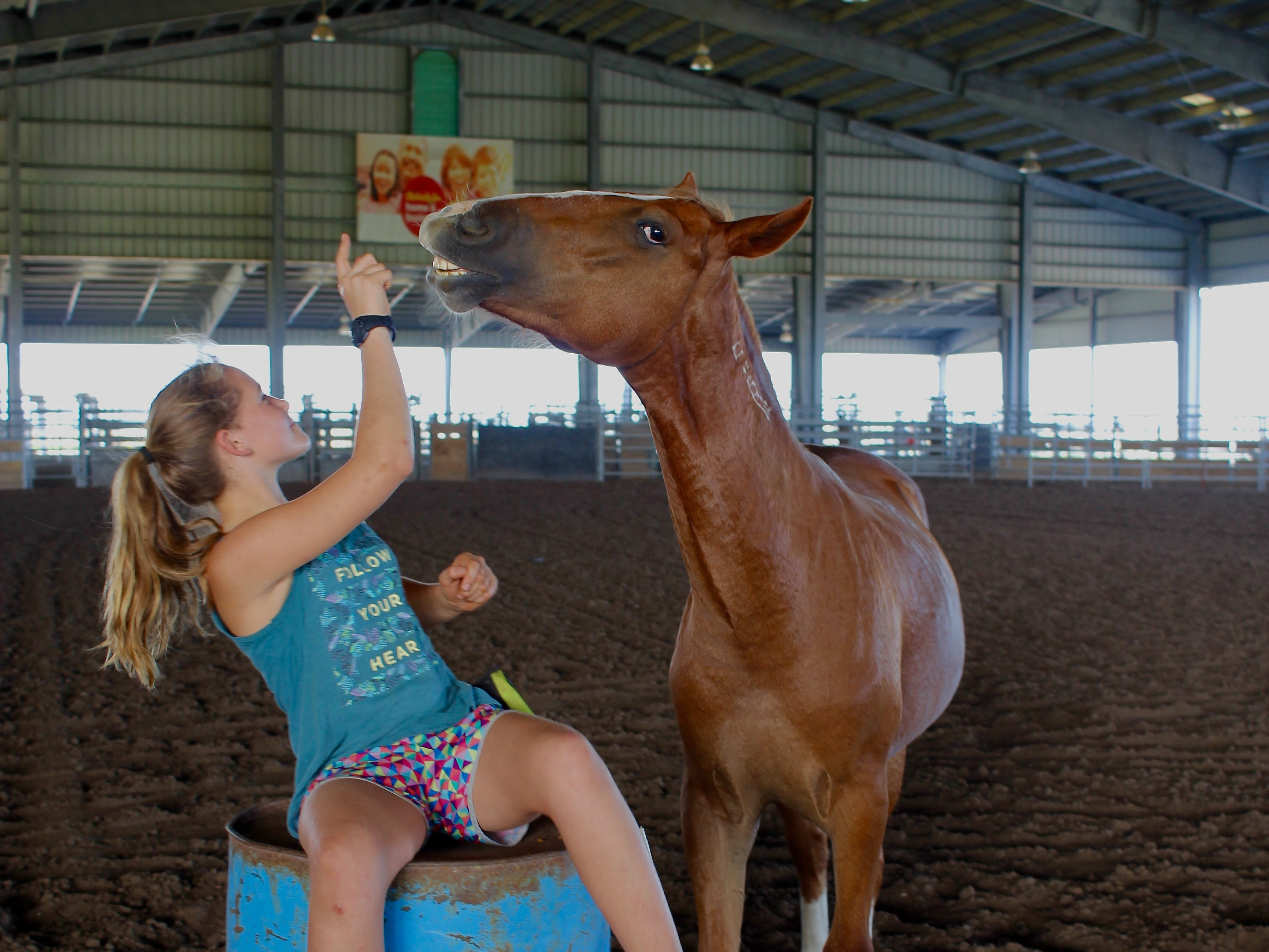 Frances Walsh, 11, will compete in the Extreme Mustang Makeover with this young horse rescued from public land.