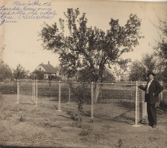 Jon William Croft's great grandfather William Landis stands in front of the original Red Delicious apple tree on his farm in Madison County, Ia., circa 1925.