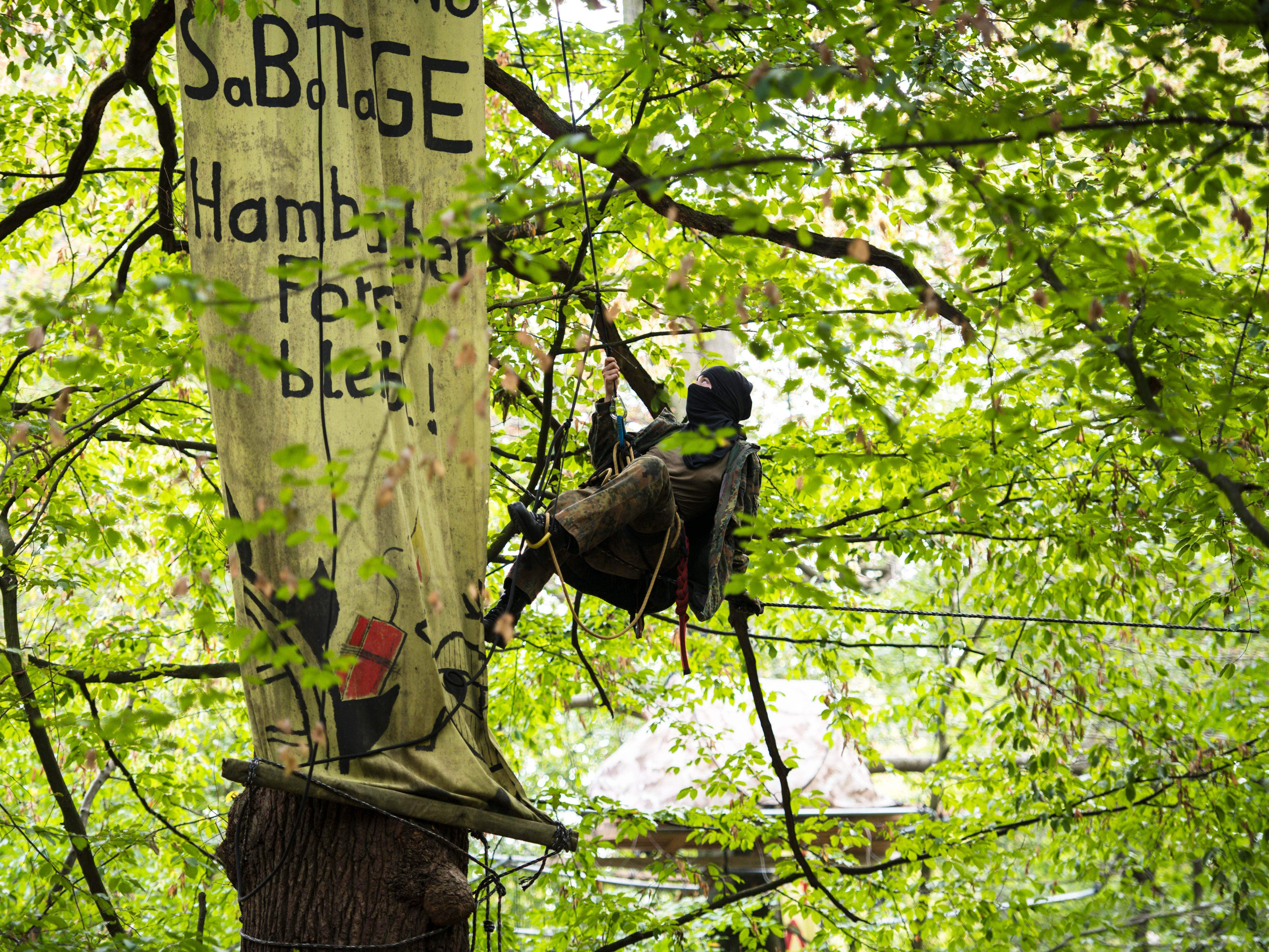 "An environmental activist lowers herself down next to a banner reading ""Hambacher Forest Stays"" in the Hambacher Forest near Kerpen, on Sept. 5, 2018.  The Hambacher Forest is deforested in stages since 1978 for brown coal mining."