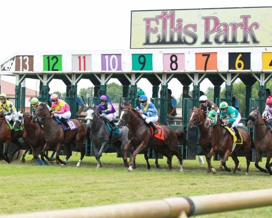 The forecast for extremely hot temperatures has caused Ellis Park to cancel Saturday's races.