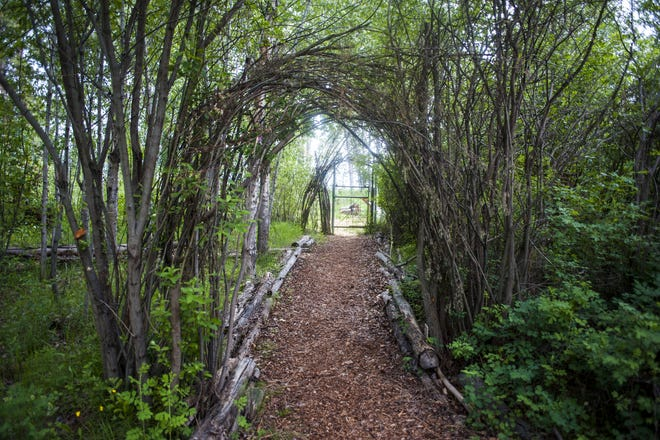 A pathway is surrounded by vines and trees at the Red Sun Labyrinth near Victor.