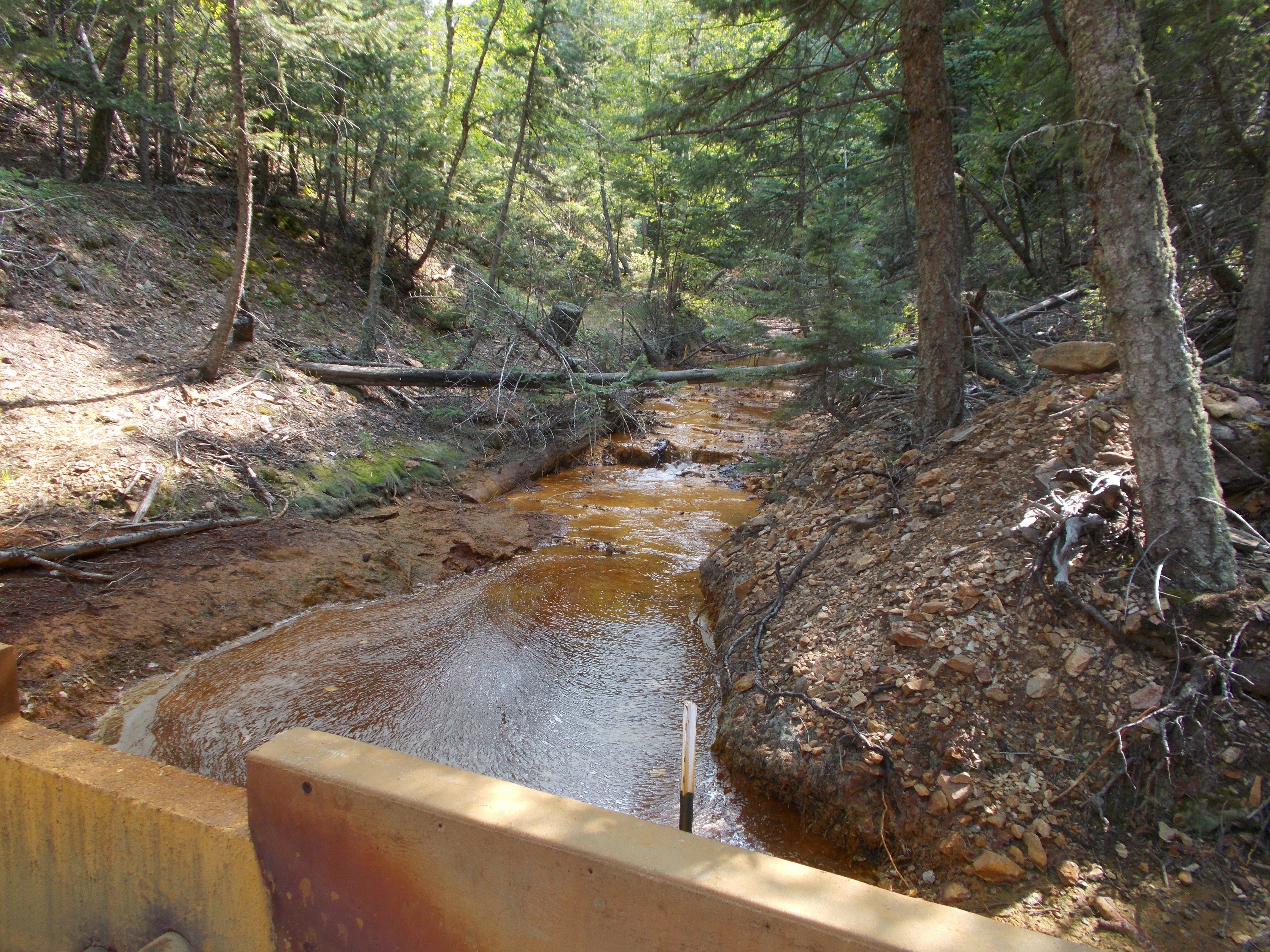 Water polluted from gold mines taints a creek in the Little Rocky Mountains.