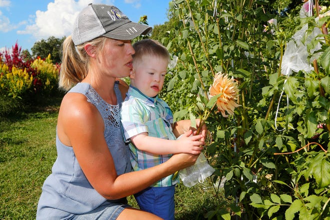 Stefani Goetz gets a little help from her son, Foxx, 4, as she picks dahlias at 21 Petals flower farm Tuesday, September 4, 2018, off County Road 700 S south of Lafayette. Customers can choose from a wide variety of flowers to create custom arrangements at the U-pick farm.