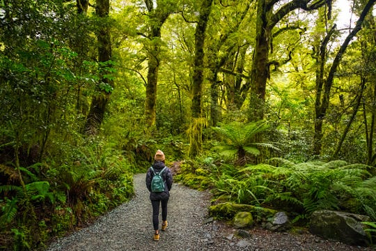 Spending time in nature has many health benefits.