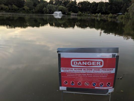 Glen Rock Duck Pond HAB Sept. 2018 a