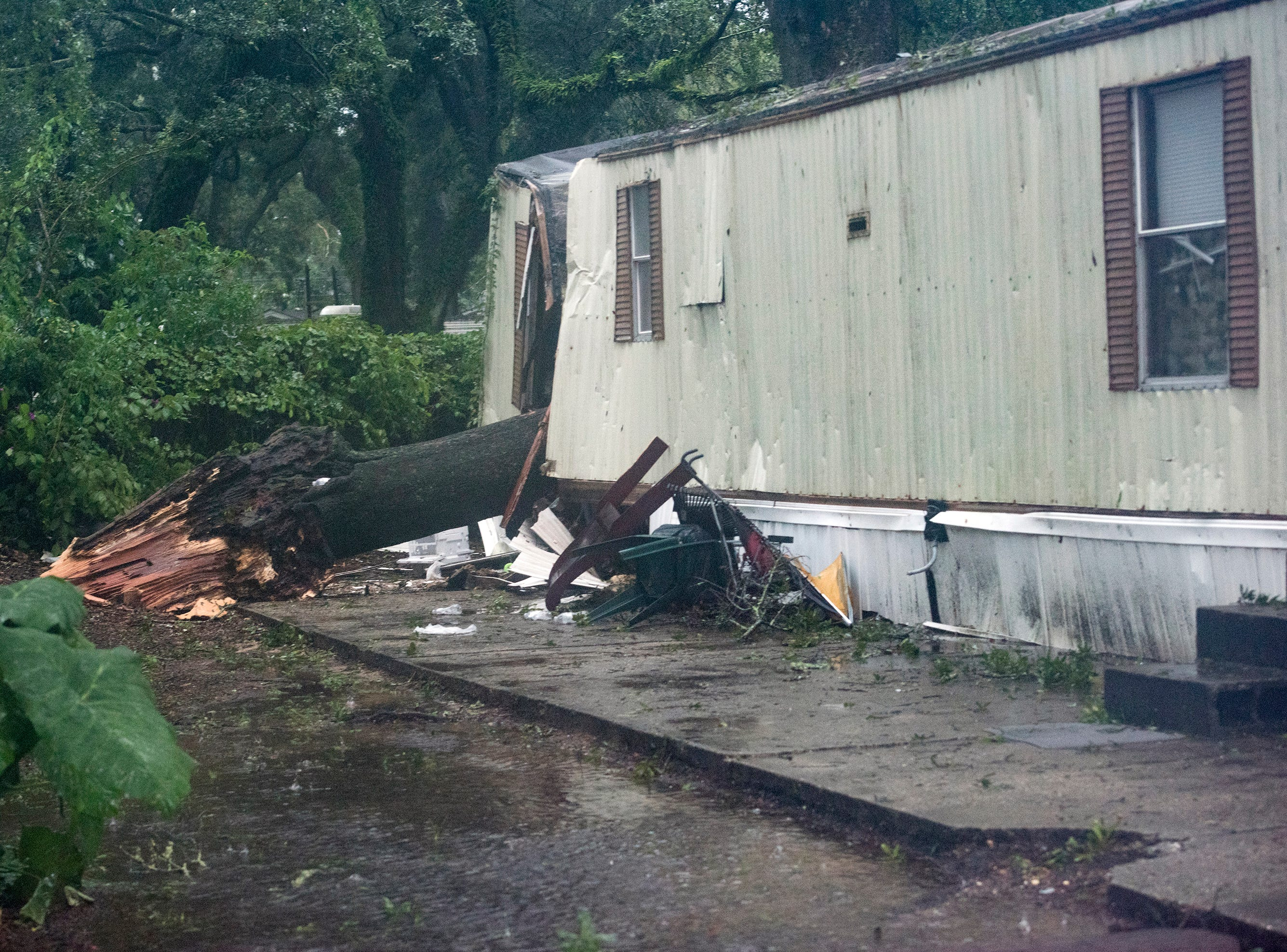 This big limb fell onto a trailer in West Pensacola killing a child as Tropical Storm Gordon moved through the area on Tuesday, Sept. 4, 2018.