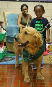 Cason McDonald isn't starting school just yet, but he went to see his sister, Najjiya Cancer, off to her first day at Violet Avenue Elementary School in the Hyde Park district on Sept. 5, 2018. Here, Cason pets the school's new therapy dog, Milano, while his mom, Janita Chestnut, looks on.