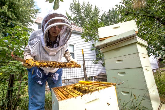 082918 Stevens Point Bees 05