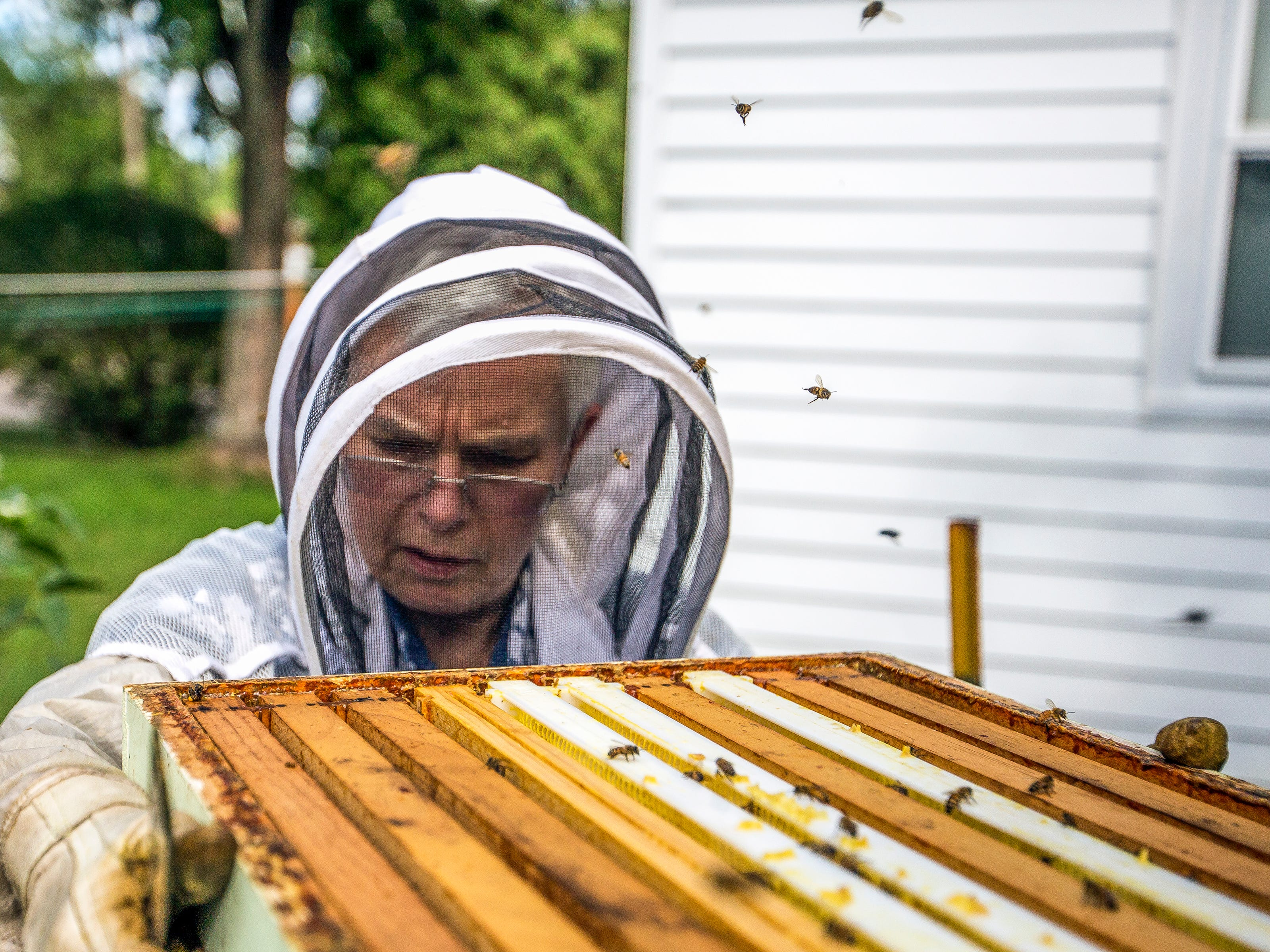 Joy Berg checks on the health of a hive that is among those she and her sister Wendy Dolan keep in the backyard of Dolan's home in Stevens Point, Wis., August 29, 2018.