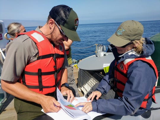 Ethan McKinley, acting superintendent of Channel Islands National Park, works with biologist Annie Little.