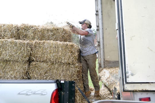 Eliada staff member Hampton Boggs loads bales of hay from a trailer to a pickup as he sets up for the annual corn maze on Wednesday, Aug. 5, 2018. The 10th annual Fall event, which opens on September 15, features the maze through the cornfield, a jumping pillow, corn cannon, kiddie maze and more.