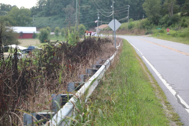 The North Carolina DOT has been spraying herbicides in Buncombe County, including along this stretch of Reems Creek Road.