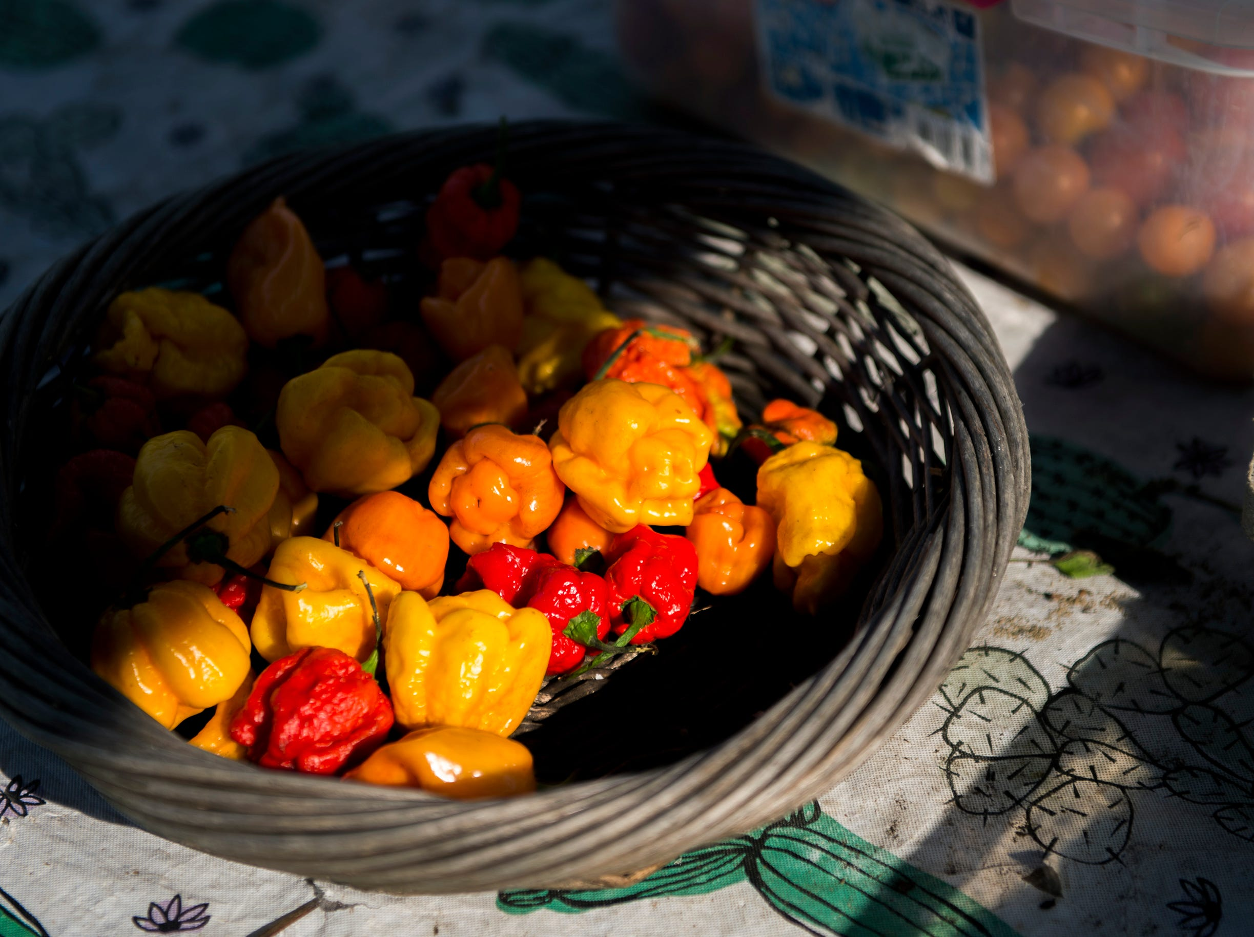 A basket of hot peppers at Free Haven Farms Thursday, Aug. 23, 2018 in Lawnside, N.J.