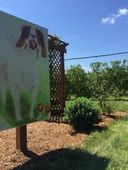 Animal cutouts are perfect for photo ops throughout the apple tree maze at Royal Oak Farm Orchard.
