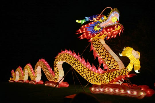 This dragon lantern in the lineup for China Lights: Panda-Mania at Boerner Botanical Gardens is the only lantern sculpture from last year to return for the Sept. 21-Oct. 21 run of the festival. More than 40 lantern sculptures are new to the festival this year and even the popular dragon will have new colors for the 2018 festival.