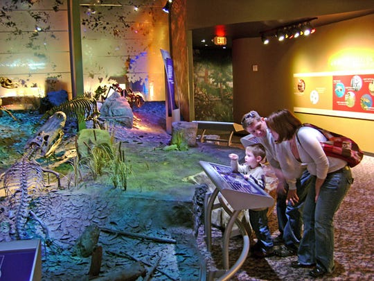 Visitors at the Hands On! Discovery Center in Gray, Tenn., explore the ecosystem of the ancient Miocene period.