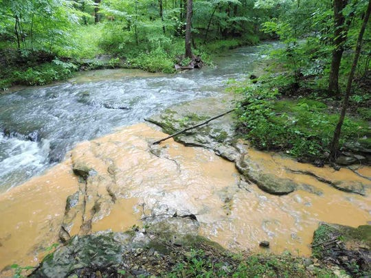 This photo where one creek flows into the larger Caney Fork Creek in Fernvale clearly shows the siltation of the once pristine water.