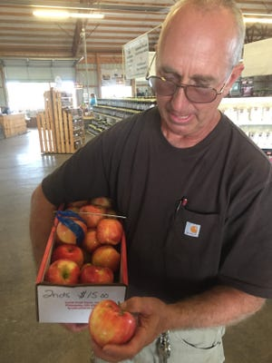 "Andy Lynd holds a carton of Honeycrip apple ""seconds"" as he discusses the difficulties and damage some of the 2019 apple crop faced. Some varieties were also hurt again earlier this year because of a freezing conditions around Mother's Day."