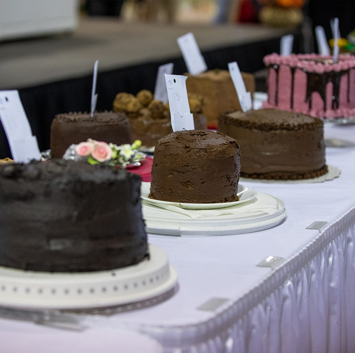 See who won this year's Gerry Frank Chocolate Layer Cake Contest at the state fair