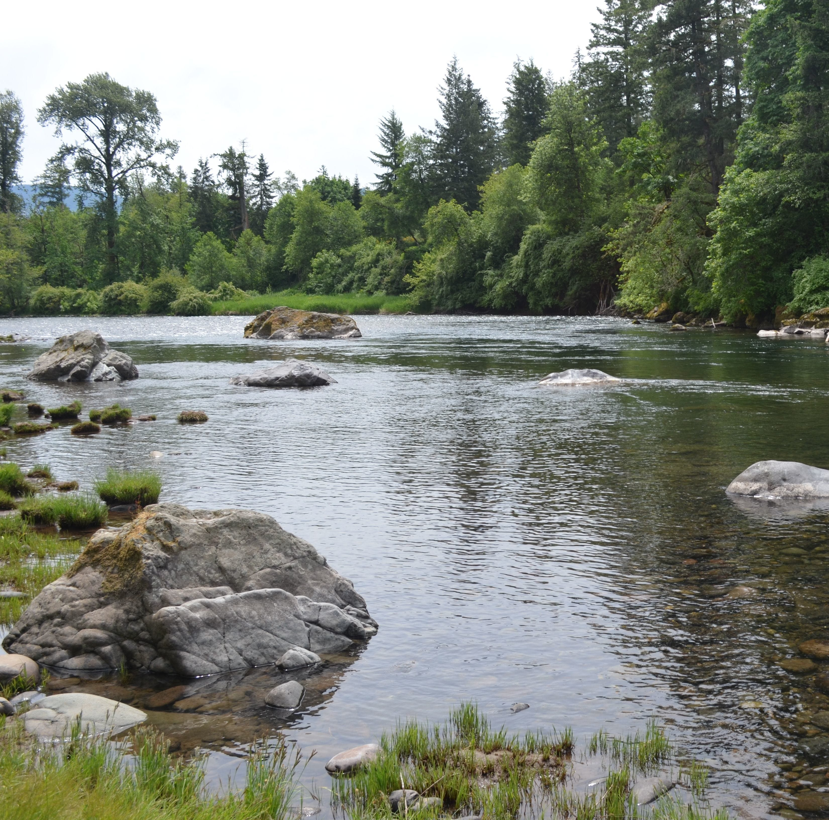 North Santiam State Recreation Area to close for tree removal