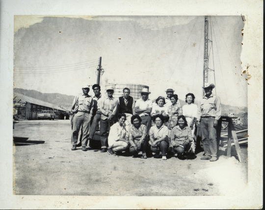 Fusako Yonemitsu (bottom row) and Tomi Matsuno (top row) with employees at the Central Coast Greenhouse on 26500 Encinal Road outside of Salinas in 1968.