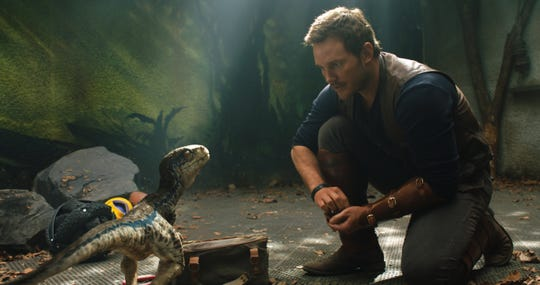 "Chris Pratt stars in  ""Jurassic World: Fallen Kingdom,"" out on DVD Tuesday."