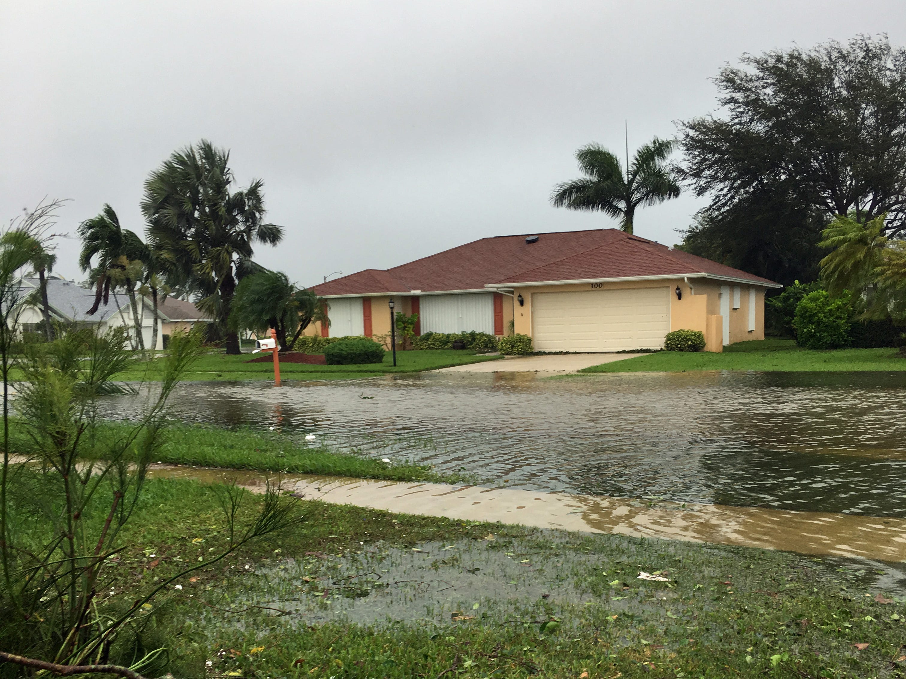 Pam Mullins shared this photo after Hurricane Irma.
