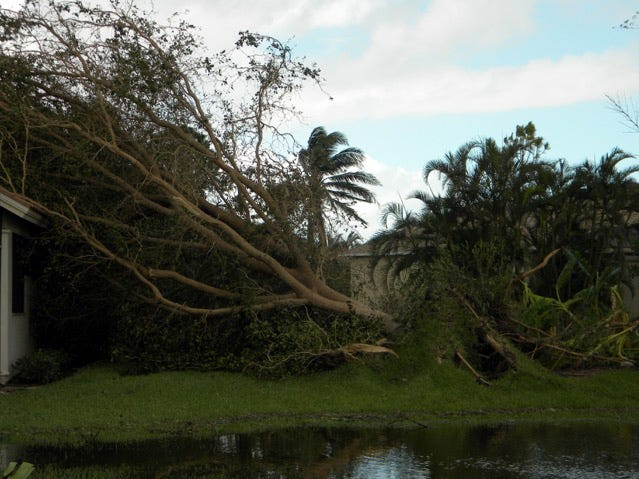 Lisa Garcia snapped this photo at Imperial Golf Estates after Hurricane Irma.