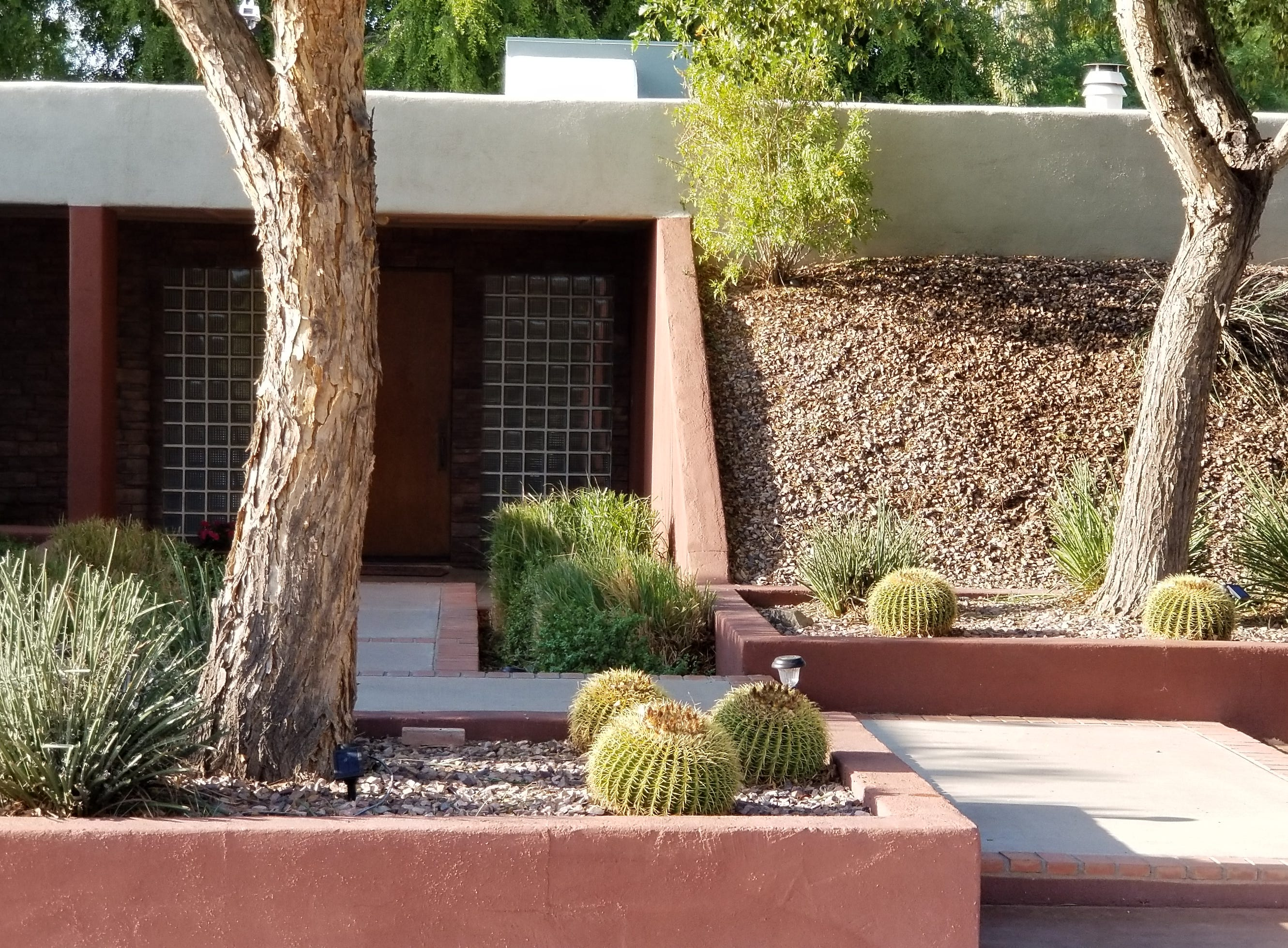 A natural flow of slightly raised concrete platforms and oversize planters with mature vegetation lead one subtly yet instinctively to the front door entrance of the property.