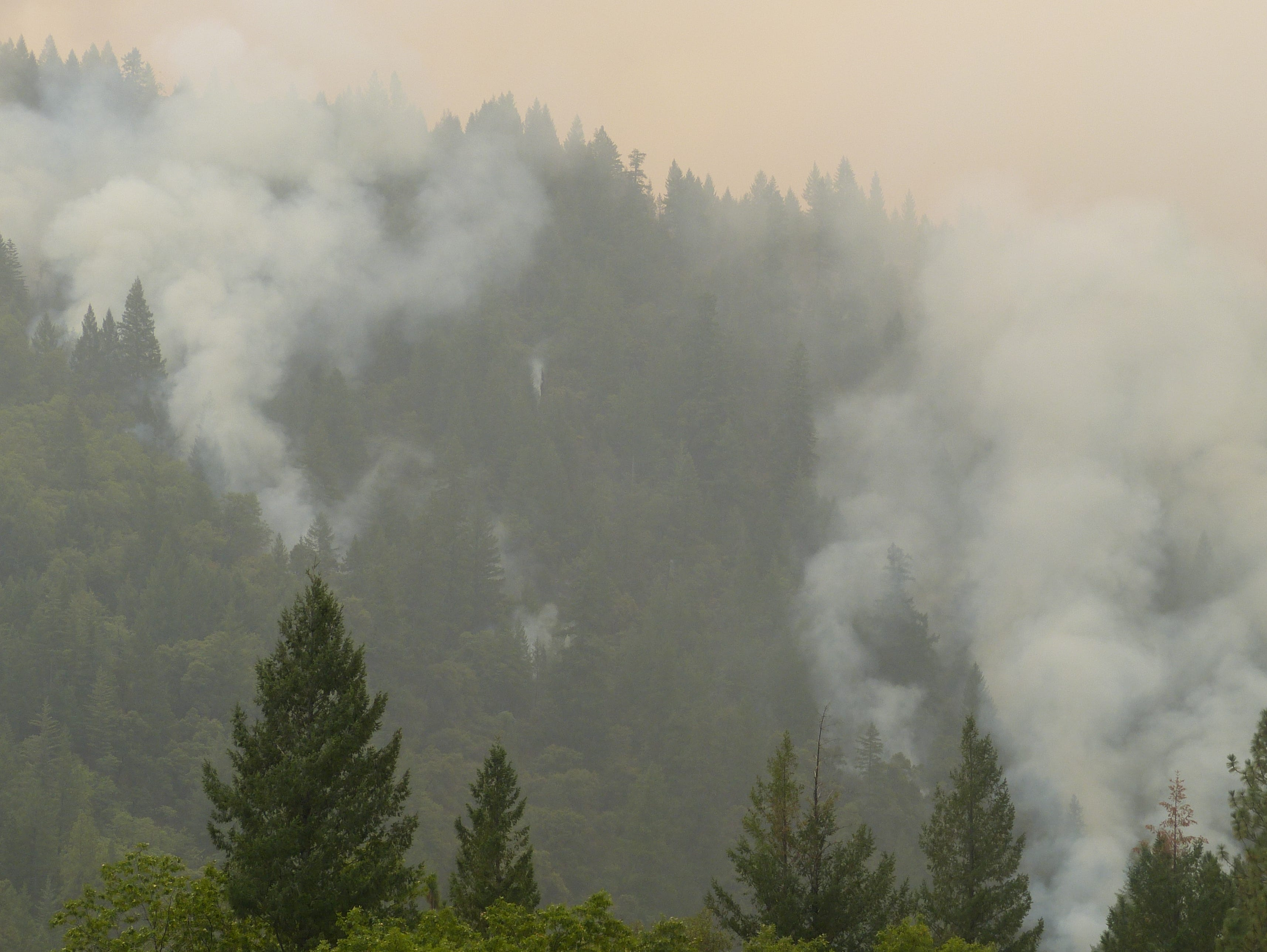 The Delta Fire continued Friday to burn off Interstate 5 north of Lakehead.