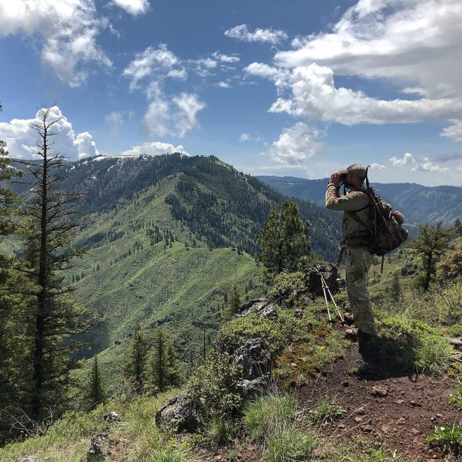 Hiking poles may not look cool for a hunter, but they can help ease carrying the load of gear in the field.