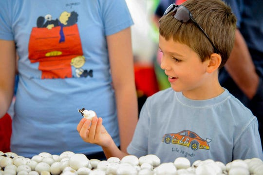 The Mushroom Festival returns to Kennett Square, Pa., this weekend.