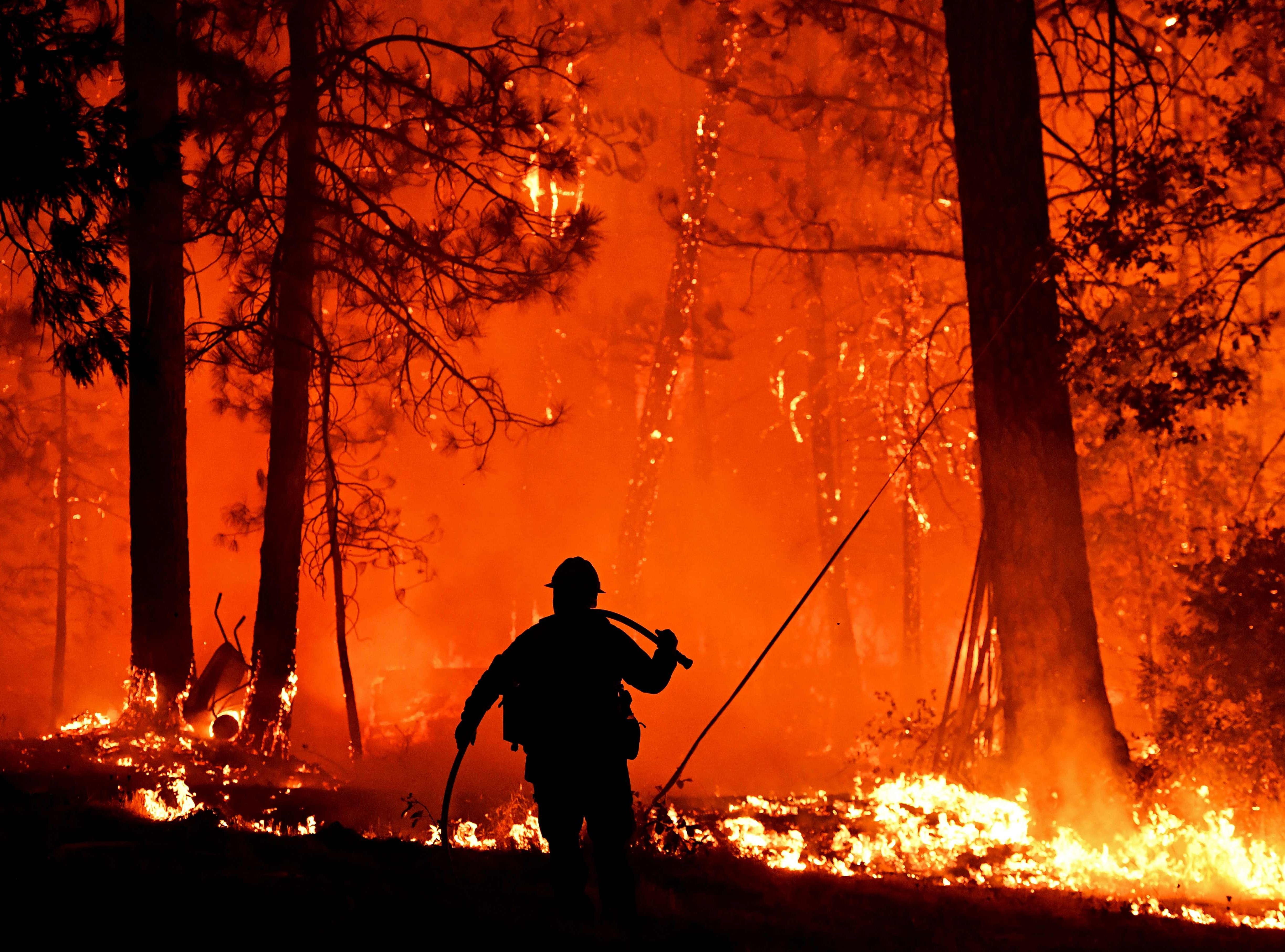 Firefighters struggle to contain backfire in the Pollard Flat area of California in the Shasta Trinity National Forest on September 6, 2018.