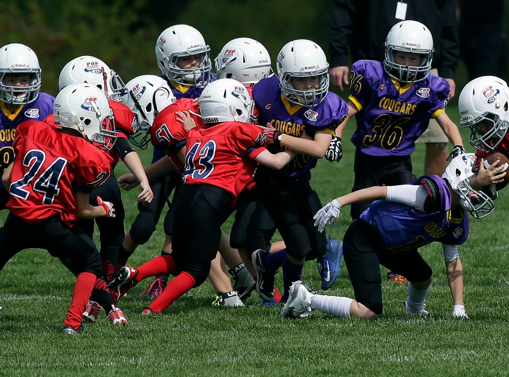 The Cougars and Ghosts play as Fox Valley Pop Warner Football opens the season Saturday, September 8, 2018, at Plamann Park in Grand Chute, Wis.Ron Page/USA TODAY NETWORK-Wisconsin